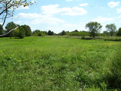 Neosho MO Residential Lots & Land For Sale: $59,900