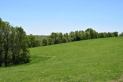 McDonald County Residential Lots & Land For Sale: Carlin Ridge Rd