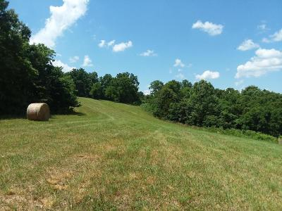 Anderson MO Residential Lots & Land For Sale: $43,900