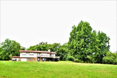 Southwest City MO Single Family Home For Sale: $136,900