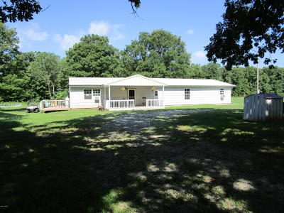 Jasper County Single Family Home For Sale: 8894 Ivy Road