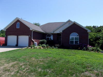 Neosho MO Single Family Home For Sale: $325,000