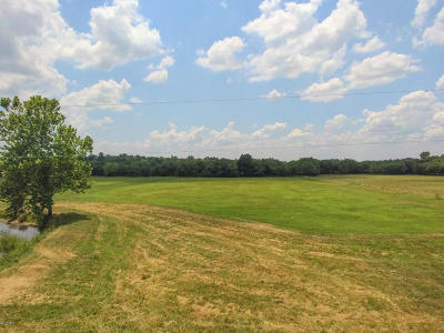 Farm & Ranch For Sale: 9487 County Road 260