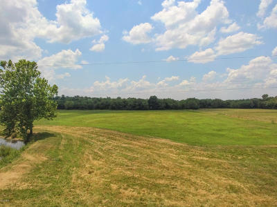 Residential Lots & Land For Sale: 9487 County Road 260