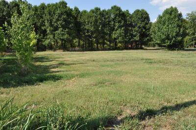 Barry County, Barton County, Dade County, Greene County, Jasper County, Lawrence County, McDonald County, Newton County, Stone County Residential Lots & Land For Sale: Joplin Street Street