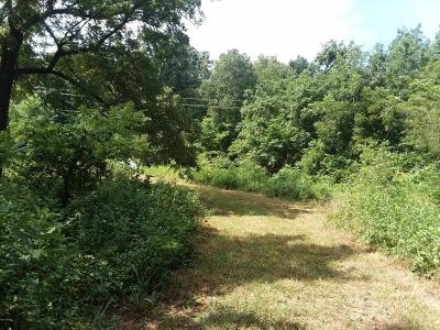 McDonald County Residential Lots & Land For Sale: 2867 Race Track Hollow