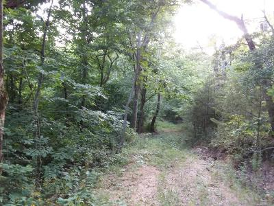 McDonald County Residential Lots & Land For Sale: Happy Hollow Road