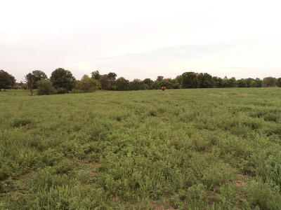 Neosho MO Residential Lots & Land For Sale: $172,000