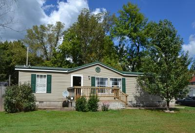 McDonald County Single Family Home For Sale: 502 4th Street