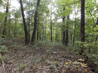 McDonald County Residential Lots & Land For Sale: Lot 22 Cyclone Hills
