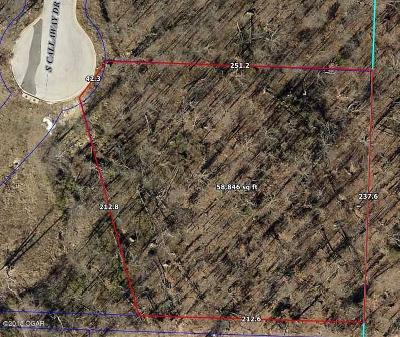 Barry County, Barton County, Dade County, Greene County, Jasper County, Lawrence County, McDonald County, Newton County, Stone County Residential Lots & Land For Sale: Lot 11-12 Callaway Drive