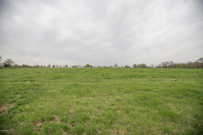 Barry County, Barton County, Dade County, Greene County, Jasper County, Lawrence County, McDonald County, Newton County, Stone County Residential Lots & Land For Sale: Sherry Lane