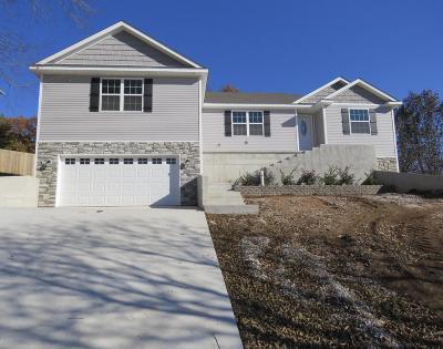 Jasper County Single Family Home For Sale: 1011 Joanne Drive