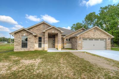 Jasper County Single Family Home For Sale: 501 Anita Drive