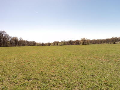 Neosho MO Residential Lots & Land For Sale: $64,900
