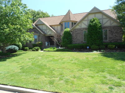 Jasper County Single Family Home For Sale: 203 S Edgewood Drive