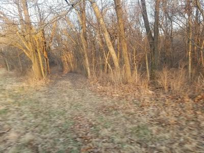 McDonald County Residential Lots & Land For Sale: Lot 8 Eagle Acres