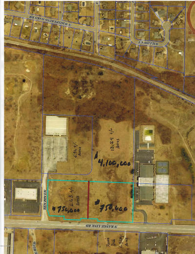 Residential Lots & Land For Sale: 13 Acres N Rangeline