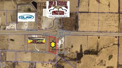 Residential Lots & Land For Sale: Tract 1 County Road 100