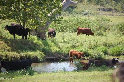 Farm & Ranch For Sale: 18308 Unicorn Road