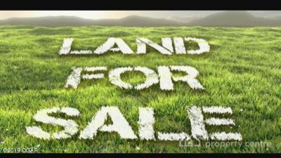 Residential Lots & Land For Sale: Xxx Highway 43