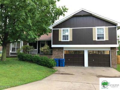 Jasper County Single Family Home For Sale: 3831 Castlerock Drive Drive