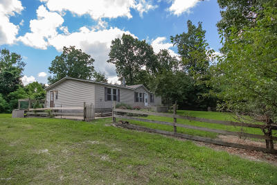 Barry County, Barton County, Dade County, Greene County, Jasper County, Lawrence County, McDonald County, Newton County, Stone County Manufactured Home For Sale: 10449 Falcon Road