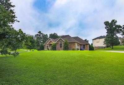 Jasper County Single Family Home For Sale: 3130 Abigail Lane