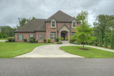 Newton County Single Family Home For Sale: 5402 Eagle Valley Drive