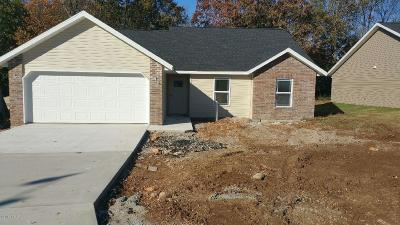 Neosho Single Family Home For Sale: 527 Lot 3 Breckenridge