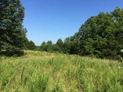 Residential Lots & Land For Sale: Lot 12 State Route E