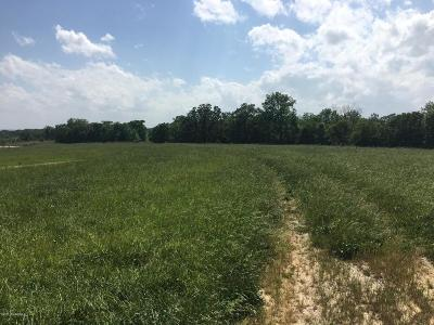 Residential Lots & Land For Sale: Skyline