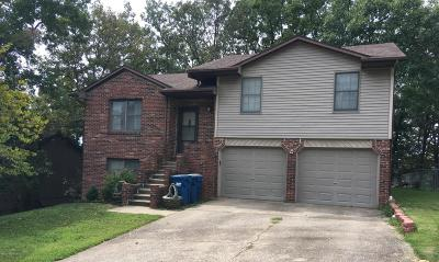 Single Family Home For Sale: 1710 Independence Drive