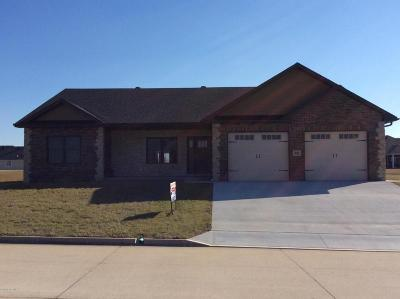 Single Family Home For Sale: 941 Country Meadows Street