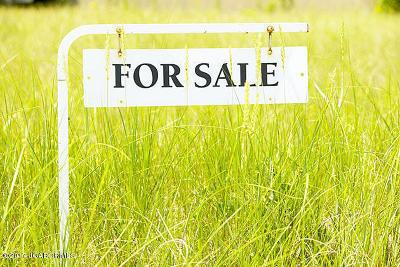 Residential Lots & Land For Sale: 4007 Liddy Lane
