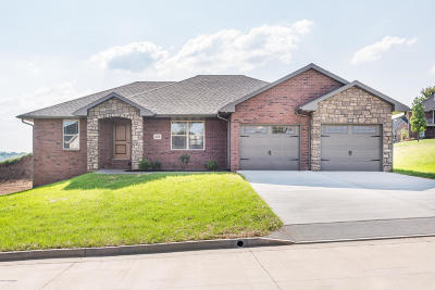 Single Family Home For Sale: 214 Paradigm Drive