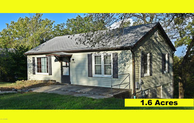 Single Family Home For Sale: 1100 S Summit Drive