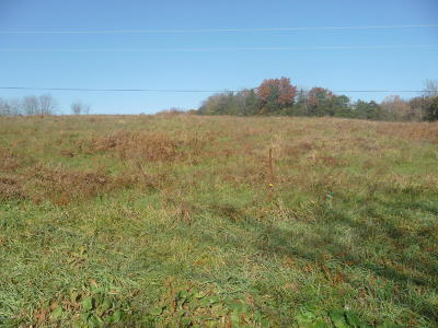 Residential Lots & Land For Sale: Elston Road