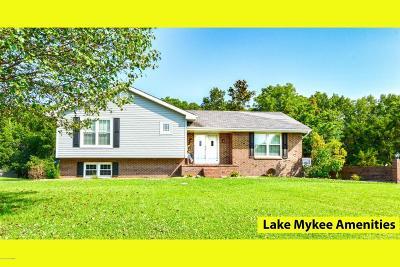 Single Family Home For Sale: 43 N Larand