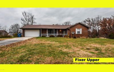 Single Family Home For Sale: 10411 Old Us Highway 54
