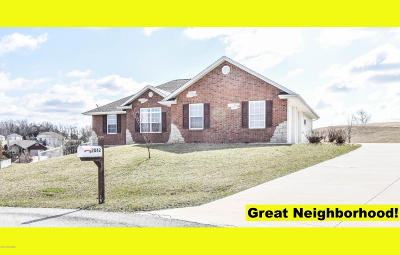 Single Family Home For Sale: 2042 Bromin Court