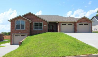 Single Family Home For Sale: 806 Jace Dale Court