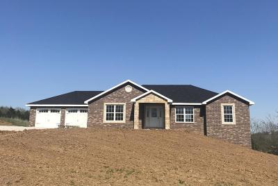 Single Family Home For Sale: 1326 Casen Court