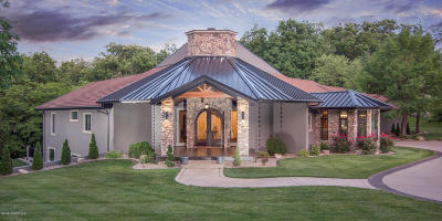Single Family Home For Sale: 407 Constitution Drive