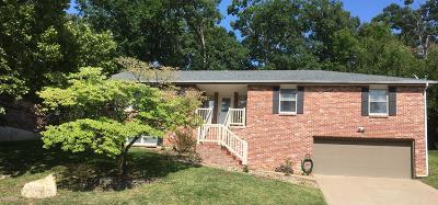 Single Family Home For Sale: 913 Cari Ann Drive