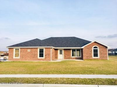 Single Family Home For Sale: 1394 Southwinds Drive