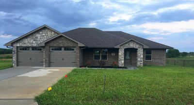 Single Family Home For Sale: 101 Paradigm Drive