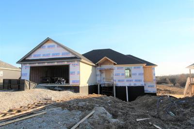 Ashland Single Family Home For Sale: Lot 215 Charlotte Drive