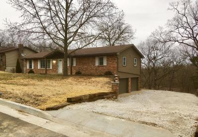 Single Family Home For Sale: 3931 Greenbrier Drive