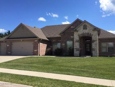 Ashland Single Family Home For Sale: 310 Eagle Lake Drive